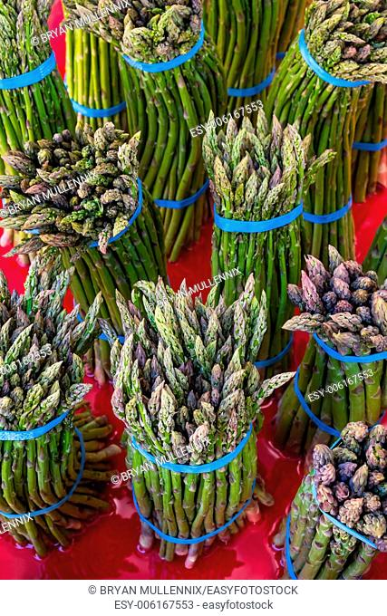 Bunches of fresh asparagus for sale at a farmers market in the Pacific Northwest