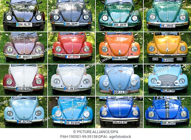 """01 May 2019, Lower Saxony, Hanover: KOMBO - VV beetles in different colours stand at the 36th """"""""Maikäfertreffen"""""""" on a parking lot at the fair"""