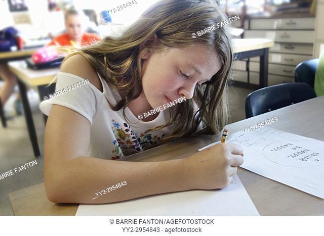 7th Grade Girl Drawing in Art Class, Wellsville, New York, USA