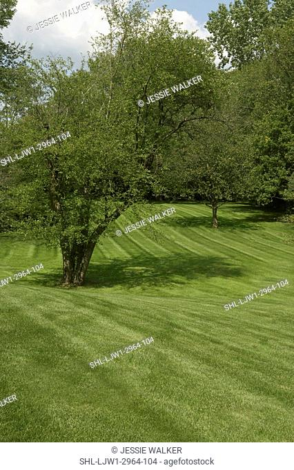 GARDENS: rolling hills , mowed lawn, sweeping area amid trees