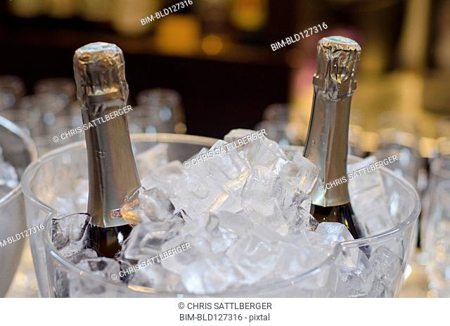 Wine bottles in ice bucket in restaurant