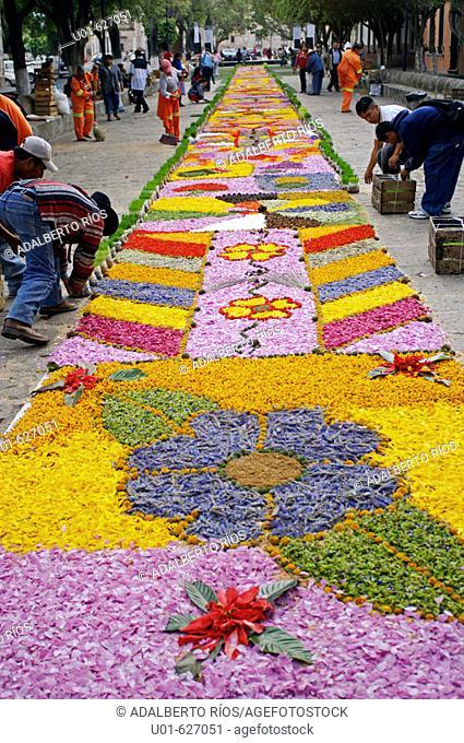 Traditional flower carpets. Patambán, Mexico/ Alfombra de flores y aserrin. Los habitantes de Patamban son expertos diseñadores de alfombras de flores y aserrin...