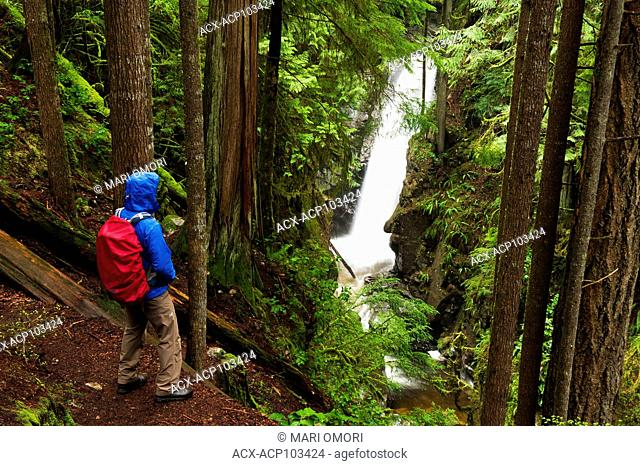 A hiker views Cypress Falls. Model Release signed