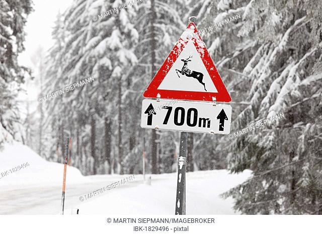 Road sign, Caution deer crossing, Oetscher-Tormaeuer Nature Park, Mostviertel, Must Quarter, Lower Austria, Austria, Europe