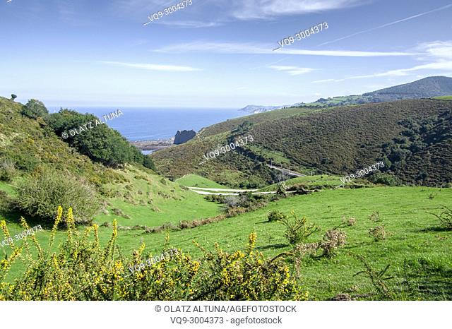 Flysch, Mendata, Sakoneta beach, Basque Country; Spain