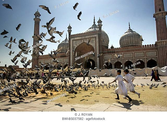 children flushing doves in front of Jama Masjid mosque, India, Delhi