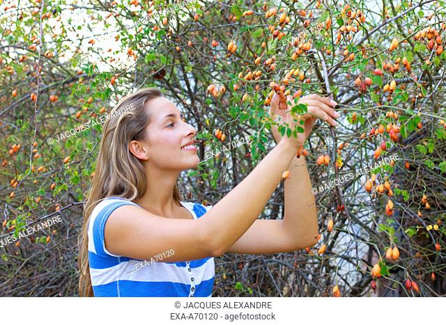 Happy woman in the nature picking fruits from tree