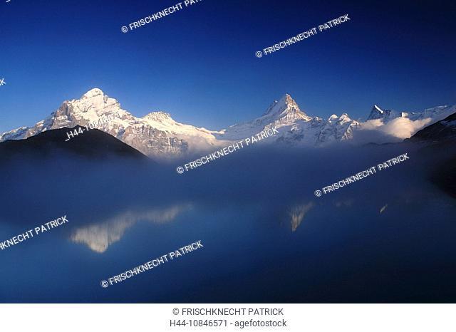Swiss Alps, reflection, Bachalpsee, lake, water, Wetterhorn, Schreckhorn, Finsteraarhorn, mountains, mountain, alpine