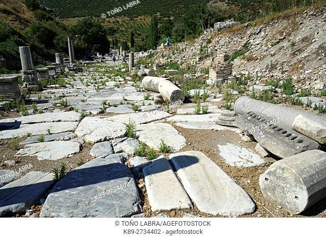 Marble Street. Ephesos. Ancient Greece. Asia Minor. Turkey