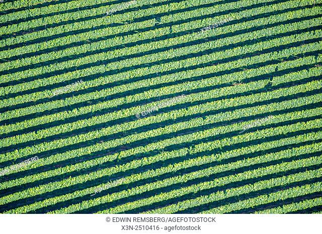 Aerials of farmland in Harford County, MD