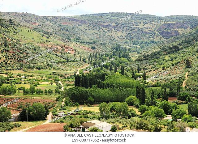 View from El Corralon viewpoint in Alcaraz village ,Olive trees in Alcaraz mountain range  Albacete province, Spain