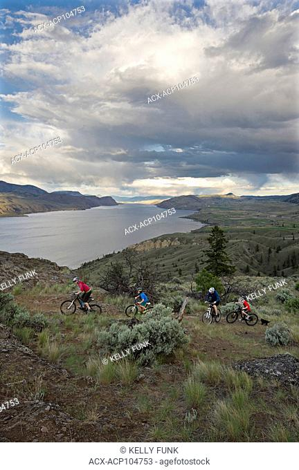 A family of bikers navigates the trail over Kamloops Lake, west of Kamloops, Thompson Okanagan region, British Columbia, Canada
