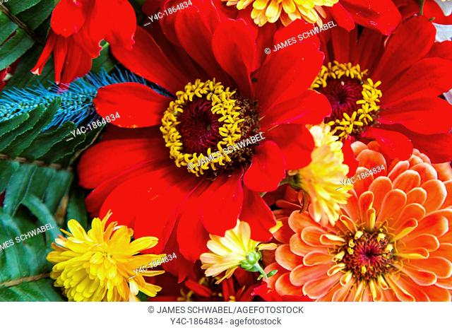 Close up of fall multicolored flower arrangement