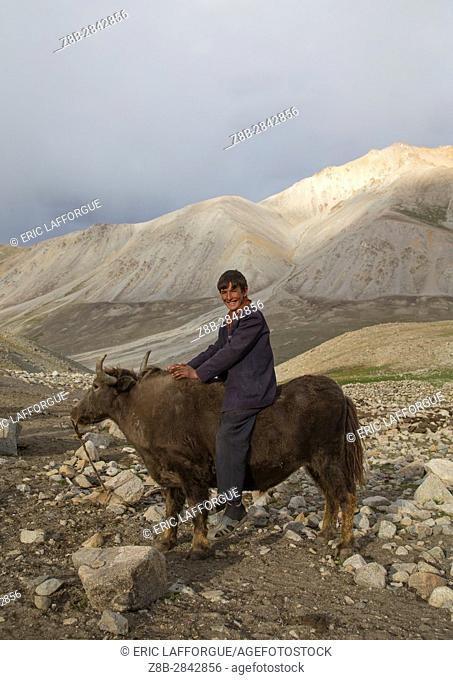 Wakhi teenage boy riding a yak, Big pamir, Wakhan, Afghanistan