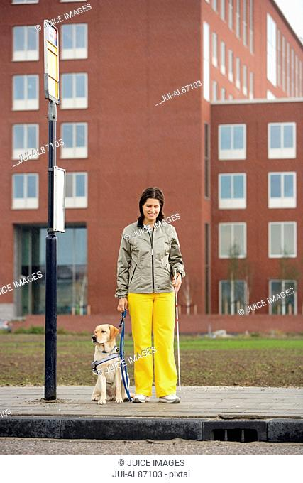 Blind woman and seeing eye dog at bus stop