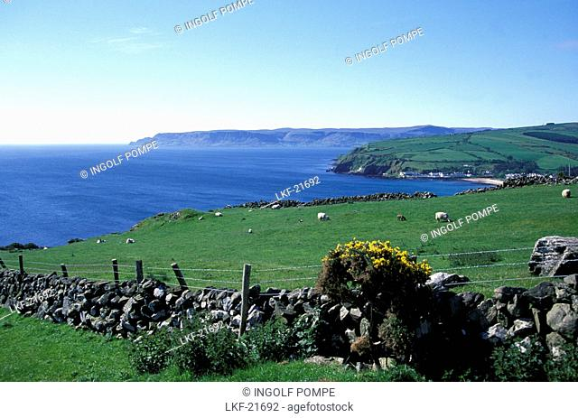 Seacoast with fields, Torr Head, Antrium, Ireland