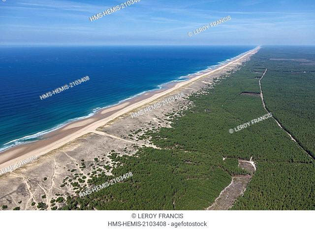 France, Gironde, Le Porge, the beach, the dune and the pine forest (aerial view)