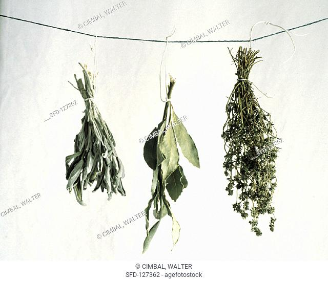 Three Dried Herb Bouquets Hanging From a String