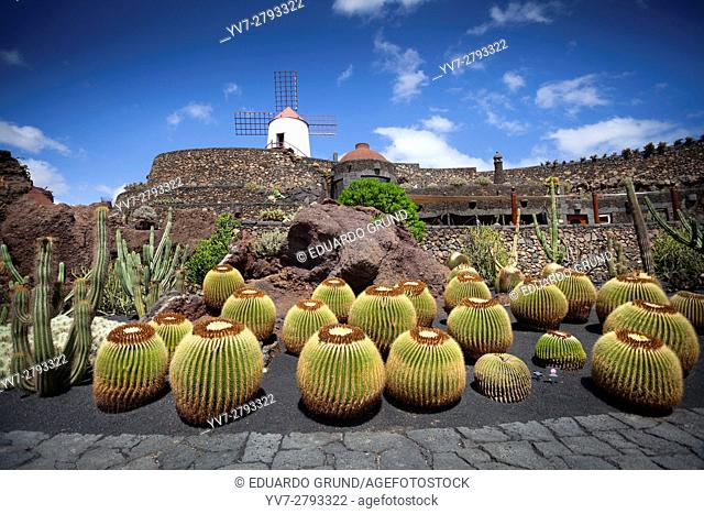 The Lanzarote Cactus Garden is a Cactarium located in an old quarry of volcanic sand extraction (picón) that Lanzarote farmers use to cover their crops and thus...