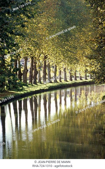 The banks of the Hure, Canal Lateral a la Garonne, Gironde, Aquitaine, France, Europe