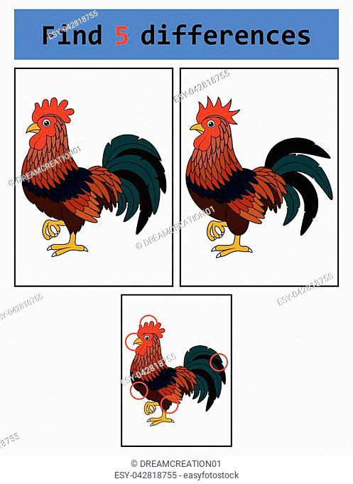 Vector Illustration of Find 5 differences (Rooster)