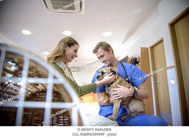 Veterinarian petting dog in lobby