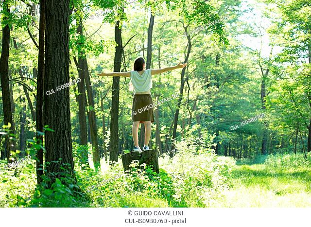 Rear view of woman standing on forest tree stump with arms open, Vogogna, Verbania, Piemonte, Italy