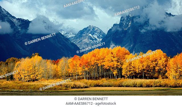 Fall Scenic, Grand Teton National Park, Wyoming
