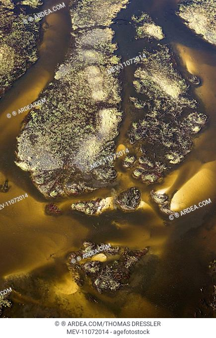 The Gomoti River with its labyrinthine channels, islands and sandbanks aerial view - Okavango Delta, Moremi Game Reserve, Botswana