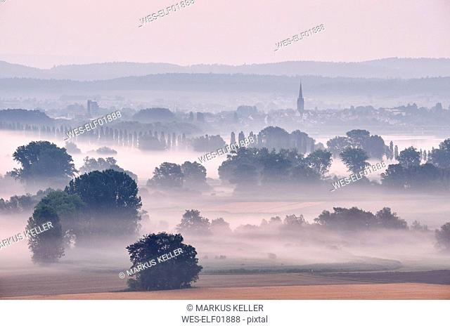 Germany, Baden-Wuerttemberg, Constance district, Radolfzell, view to Radolfzeller Aach in the morning with fog