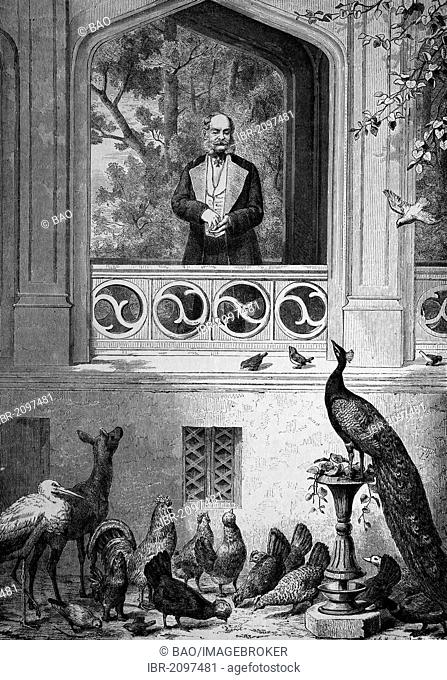 Kaiser Wilhelm with his fowl run, wood engraving, c 1880