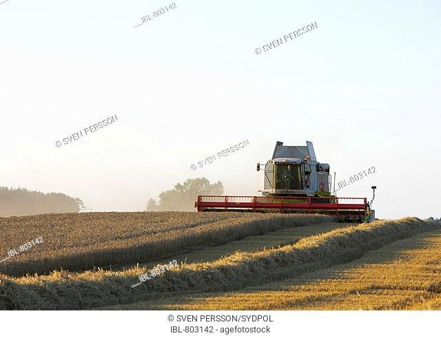 Combine harvester on field. Skåne, Sweden