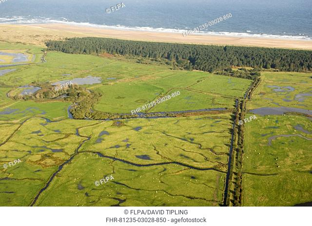 Aerial view of grazing marsh, pine woodland and coastline, Holkham National Nature Reserve, North Norfolk, England, october