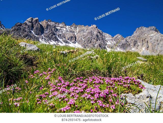 lake sainte anne qeyras in hautes alpes in france