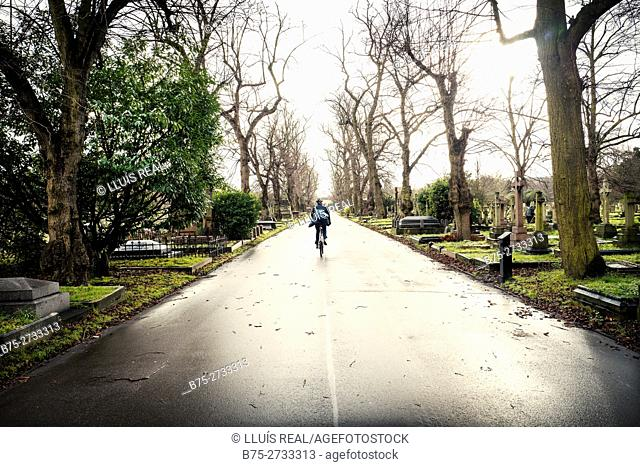 Man riding bicycle in Brompton Cemetery. Chelsea, London, England