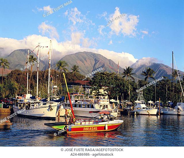 Harbour. Lahaina. Maui. Hawaii. USA