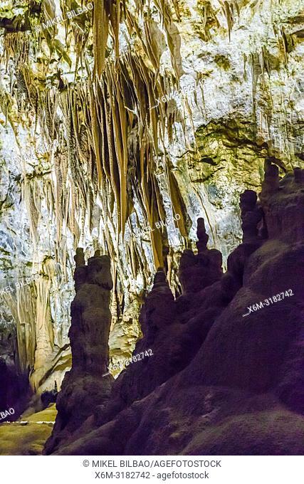 Postojna Cave. Inner Carniola region. Slovenia, Europe