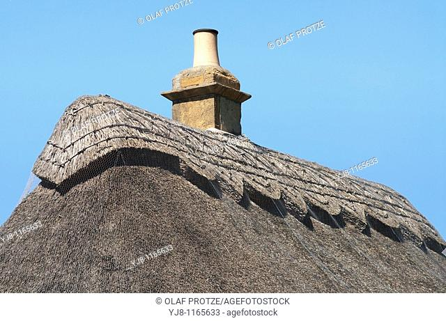 Detail of a typical thatched Cotsworld Cottage roof