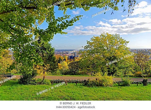 Neustadt, Rhine level, autumn foliage, Neustadt in Weinstrasse Germany