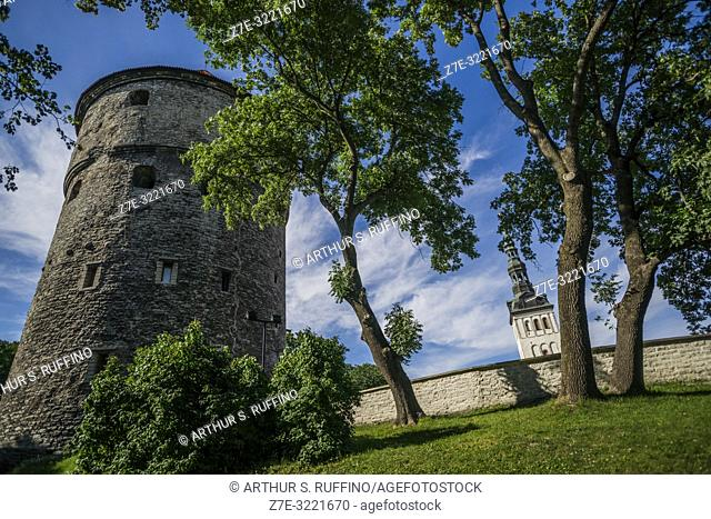 Tallinn City Walls and spire of St. Nicholas' Church. Old Town, Tallinn, Estonia, Baltic States