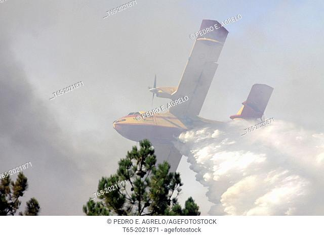 A seaplane plans dropping water on a forest fire in Galicia, Spain