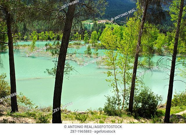 Cola del Fuensanta reservoir (Tail end of the Fuensanta reservoir). Sierra del Segura. Yeste. Province of Albacete. Spain