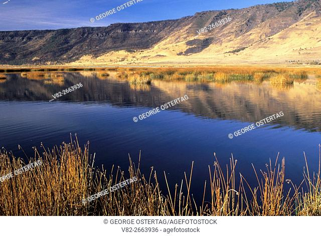 Ana River, Summer Lake Wildlife Area, Oregon