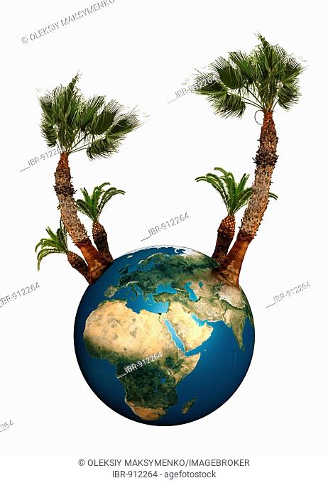Earth globe with palm trees growing from it