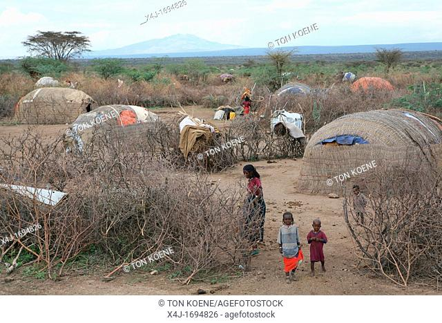 The Afari Northern Etiopie were originally nomads and live in very primitive huts made of straw, twigs and a piece of plastic living conditions are hard: it is...