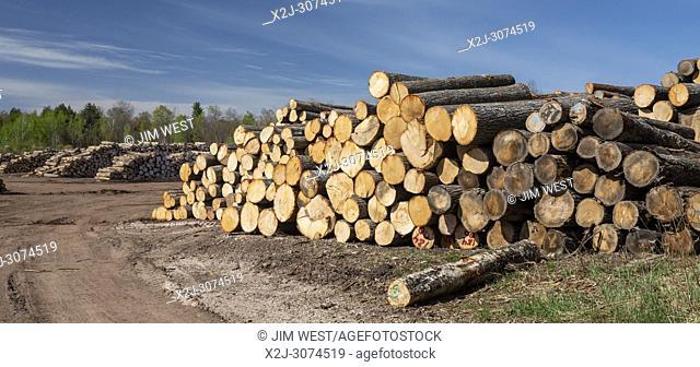 Baraga, Michigan - The Besse Forest Products log yard in Michigan's upper peninsula