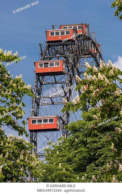 Austria, Vienna, 2nd district, Leopoldstadt, big wheel, Prater, landmark