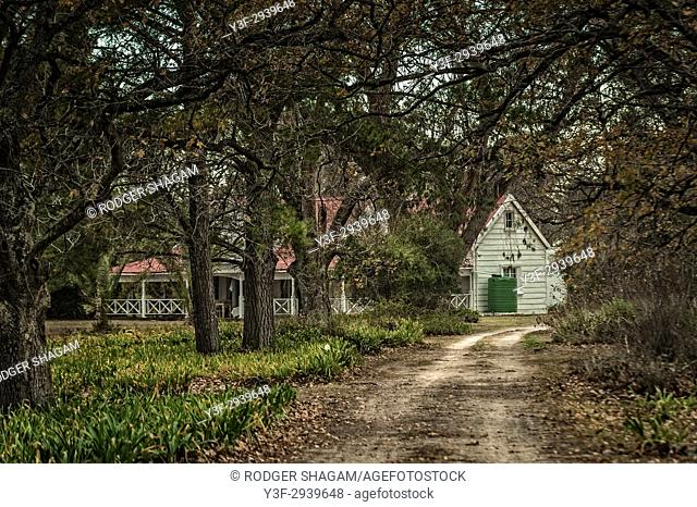 Old wooden farmhouse deep in a forest. Western Cape, South Africa
