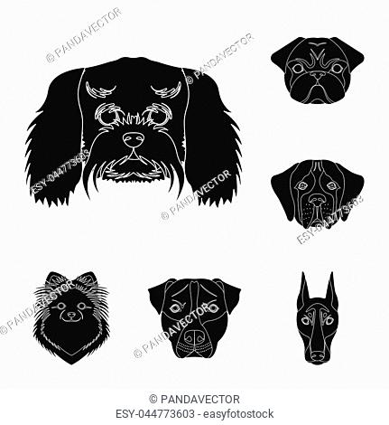 Dog breeds black icons in set collection for design.Muzzle of a dog bitmap symbol stock illustration