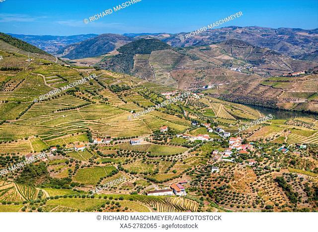 Vineyards and the Douro River, Alto Douro Wine Valley, UNESCO World Hertiage Region, Portugal